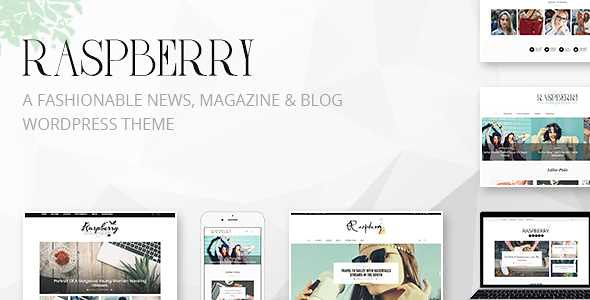 Raspberry WordPress Theme free download