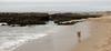 Bodega running on the beach