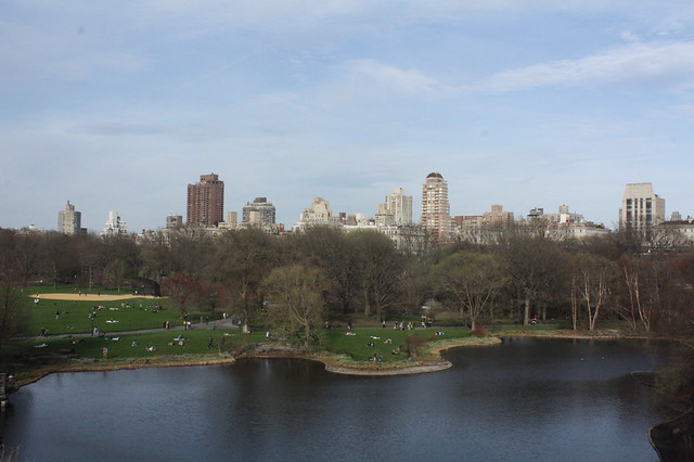 The view across the pond to the Great Lawn, with skyline