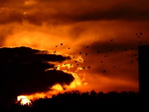 Sunset over Brno 04