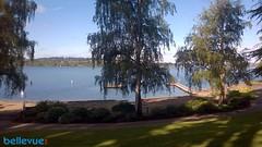 Chism Park| Bellevue.com