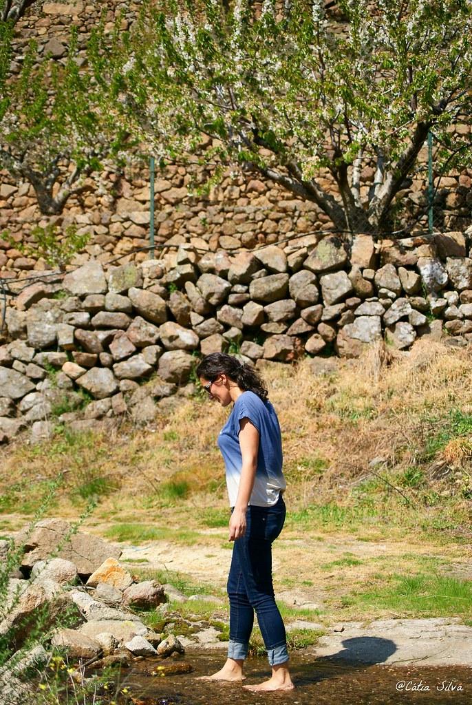 Extremadura-Valle del Jerte-Cerezo en Flor (2)