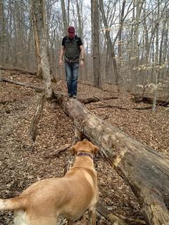Dog Spotter