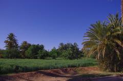 درعا (Draa Valley)
