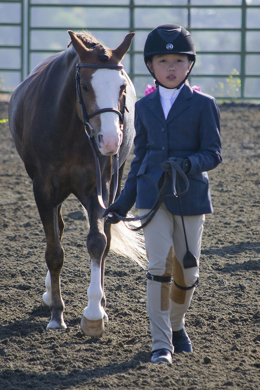Girl with Pony in the Ring