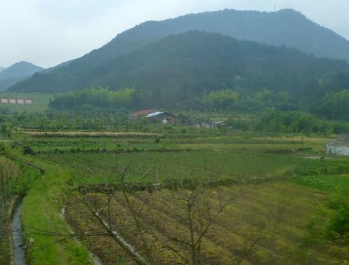 Zhejiang-Yushan-Wenzhou-train (48)