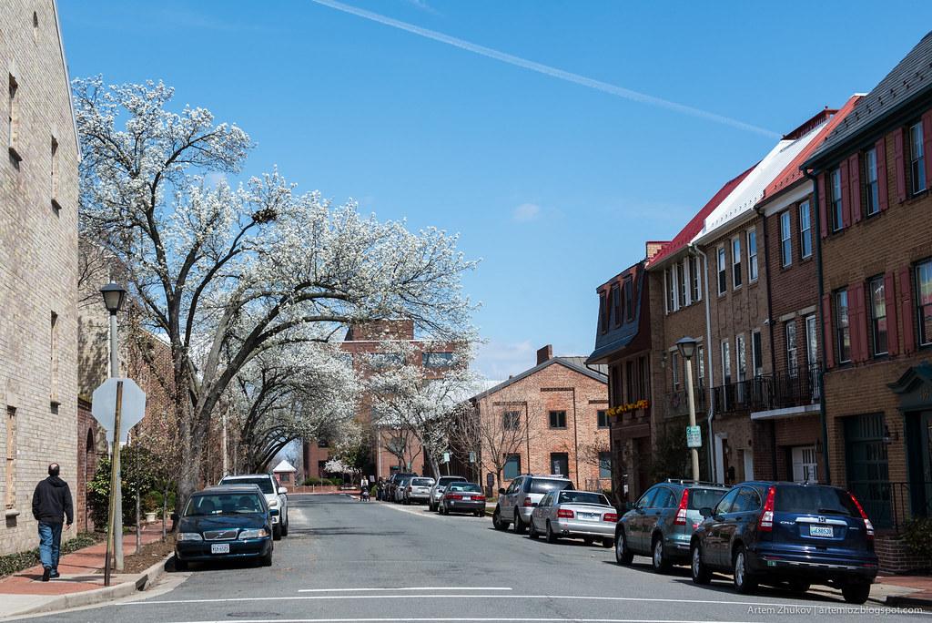 Alexandria, VA, USA-3.jpg