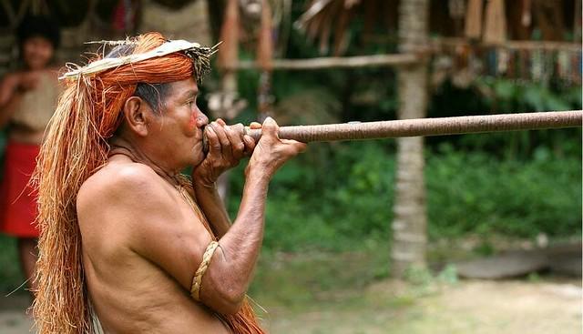1Amazon_Iquitos_Peru.jpg