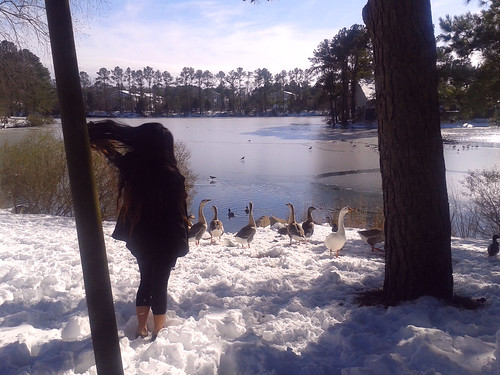 Ana and the Geese Gang (1)(Jan 30 2014)