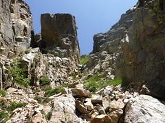 Dans le ravin de descente sur la bergerie de Colga
