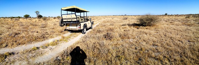 Kalahari Plains  24