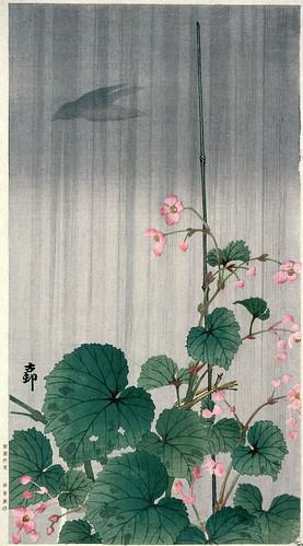 010-Begonias en la lluvia-Ohara Koson-via Lacma