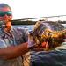 perfect-sarasota-fishing-trip-tips-bait-florida-1