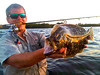 perfect-sarasota-fishing-trip-tips-bait-florida-1
