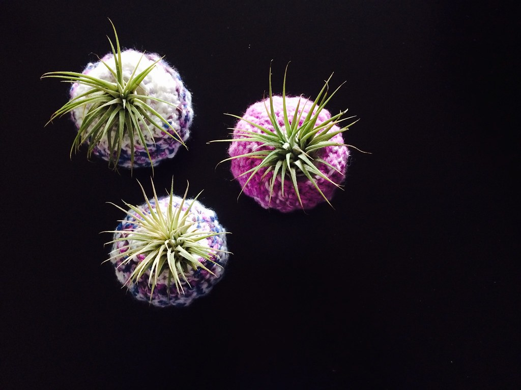 air plant crochet poufs