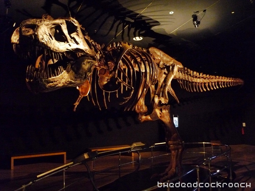 artscience museum, dawn to extinction, dinosaurs, exhibition, marina bay sands, mbs, singapore,trex,tyrannosaurus