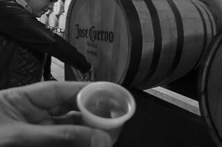 Tequila - Mundo Cuervo tasting