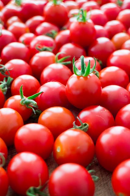 It's raining tomatoes!_12