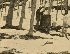 "Image from page 327 of ""New England; a human interest geographical reader"" (1917)"