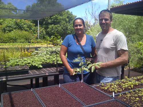 NRCS Soil Conservationist Jessica Ludgate with Molokai Land Trust Executive Director Butch Haase monitor growth of native plants at Hui Ho'olana's nursery. NRCS photo. Photo used with permission.