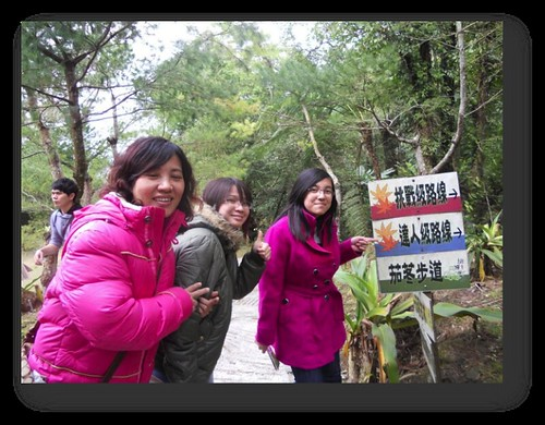 桃園復興鄉-拉拉山-桃源仙谷-鬱金香 (7)