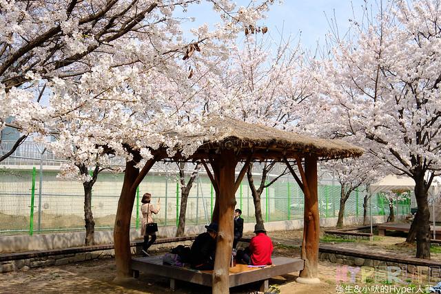 首爾林seoul forest (26)