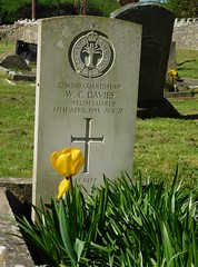 In Remembrance. W. C. Davies.