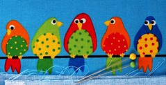 Funny birds cloth