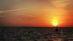 Boating Sunset Magic Tampa Bay Florida - IMRAN™