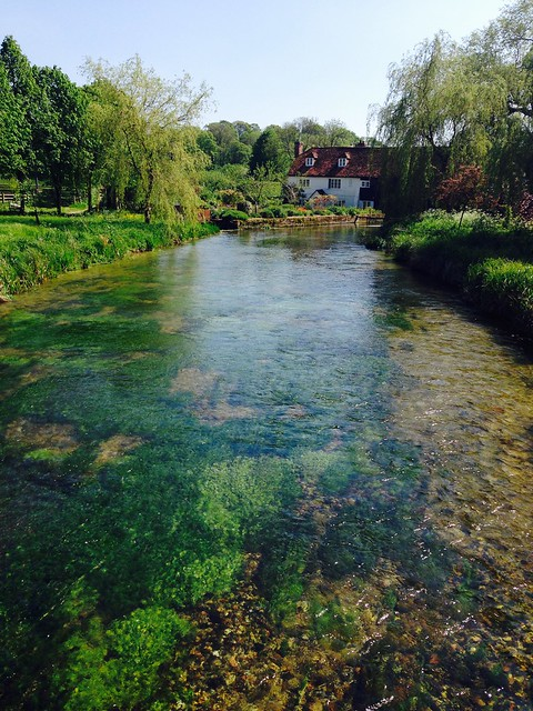 The Test at Bere Mill
