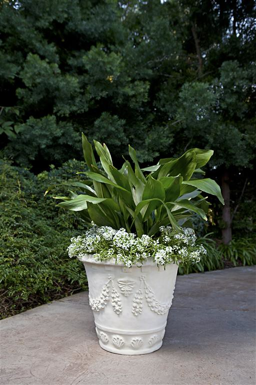 Garland Seashell Planter