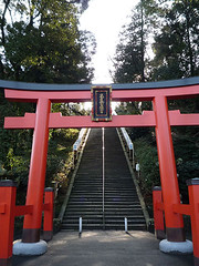shrine213
