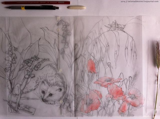 pages 18-19 au crayon