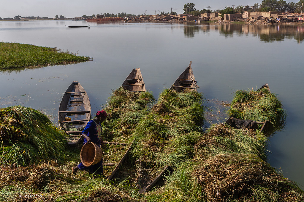 Grass lined pirogue in the Niger River - Mopti, Mali
