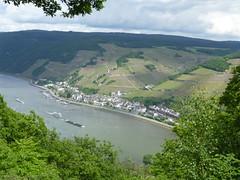 Blick vom Soonwaldsteig nach Assmannshausen