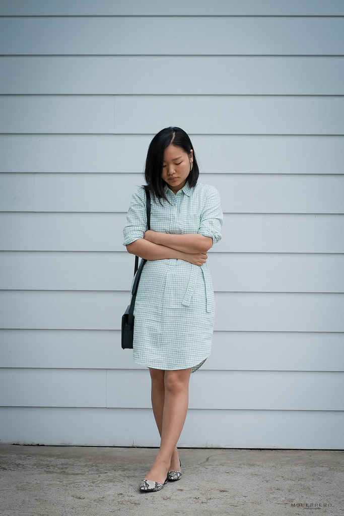 pastel green gap gingham oxford shirt dress