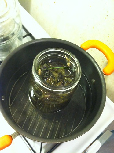 Plantain infused olive oil