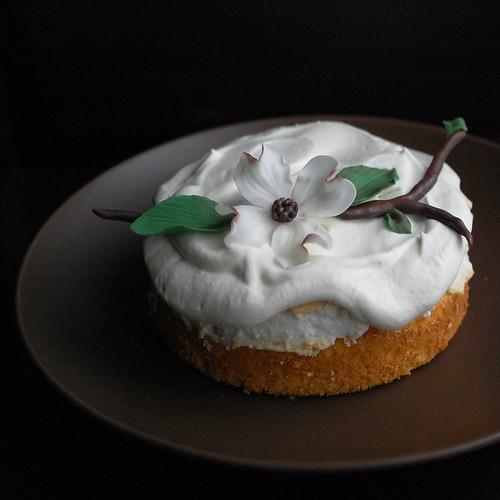 worlds best cake