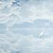 Cloud Phoenix by fabfreddy10