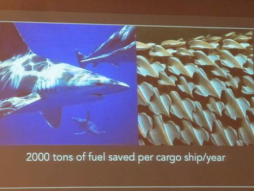 2014仿生科技國際論壇-模擬鯊魚皮膚所作的貨船船身可省下大量燃料