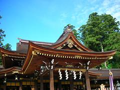 shrine135