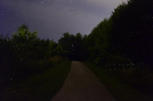 fireflies insects landscape blacksburg virginia southwestvirginia va newrivervalley nrv night nightphotography trees sky tallgrass nikon nikond7000 d7000 digital dark 18200mm 18200mmvr 18200 timelapse longexposure stars path bugs lightningbug lightningbugs outdoor