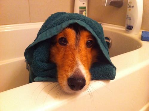 Bath time baby jedi