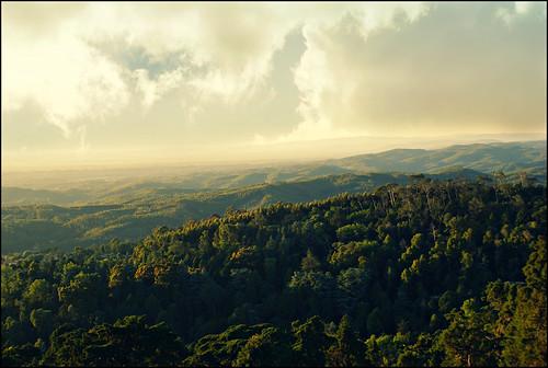 portugal sony natureza floresta montanhas buçaco núvens luso dslra100 matadobuçaco gilbertooliveira gilxxl