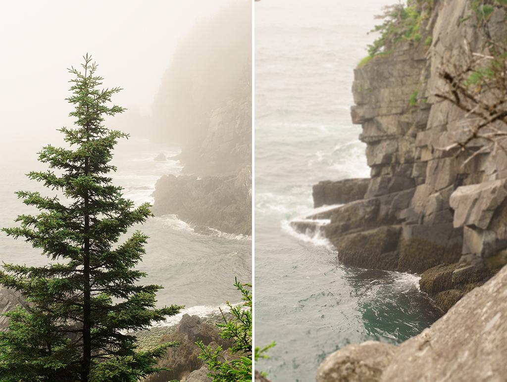 bold coast collage