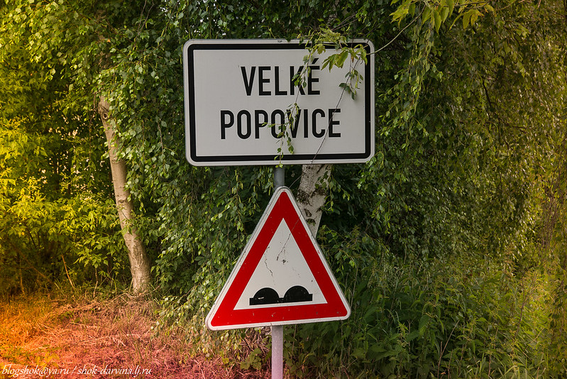 Velce Popovice-78