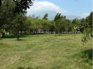 cotacachi property