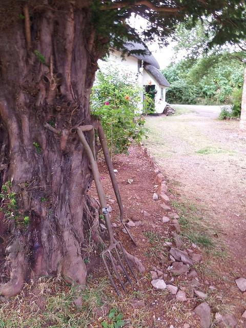 Tools Against Tree