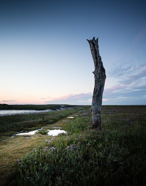 Thornham Stump