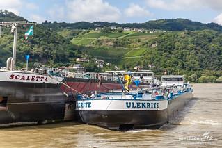 Schiffshavarie Rhein Lorch 04.08.14